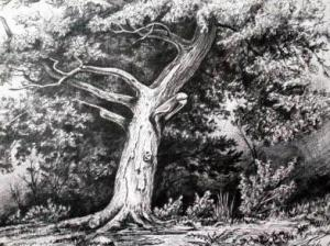Drzewa W Obrzędowości Słowian Słowianie I Słowianowierstwo